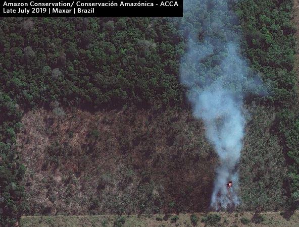Recent fire (late July 2019) in the Brazilian Amazon. Data: Maxar.
