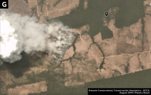 Zoom G. Fire that seems to be expanding plantation into forest in Mato Grosso state. Data- Planet