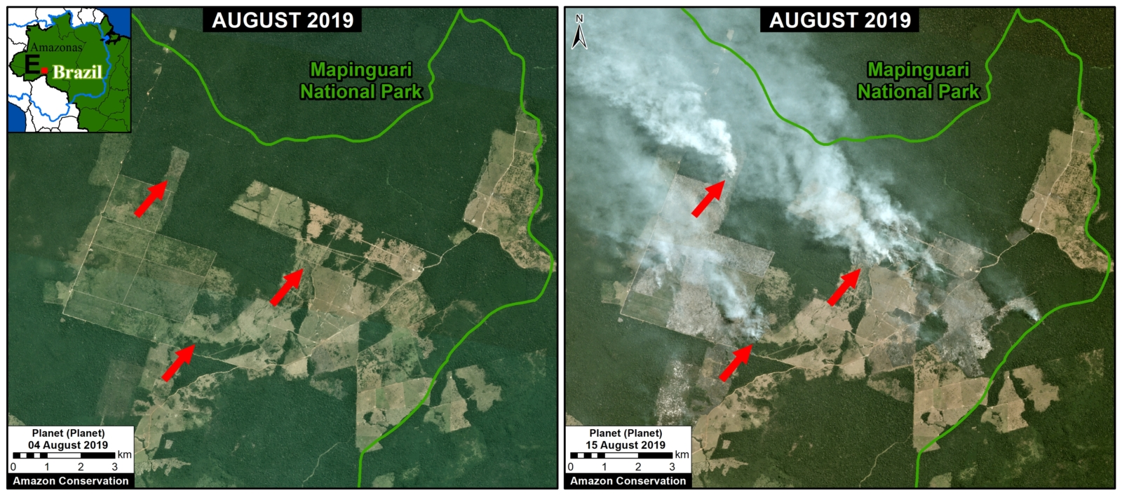Zoom E. Fires at the agriculture-forest boundary outside a national park in Amazonas state. Data- Planet