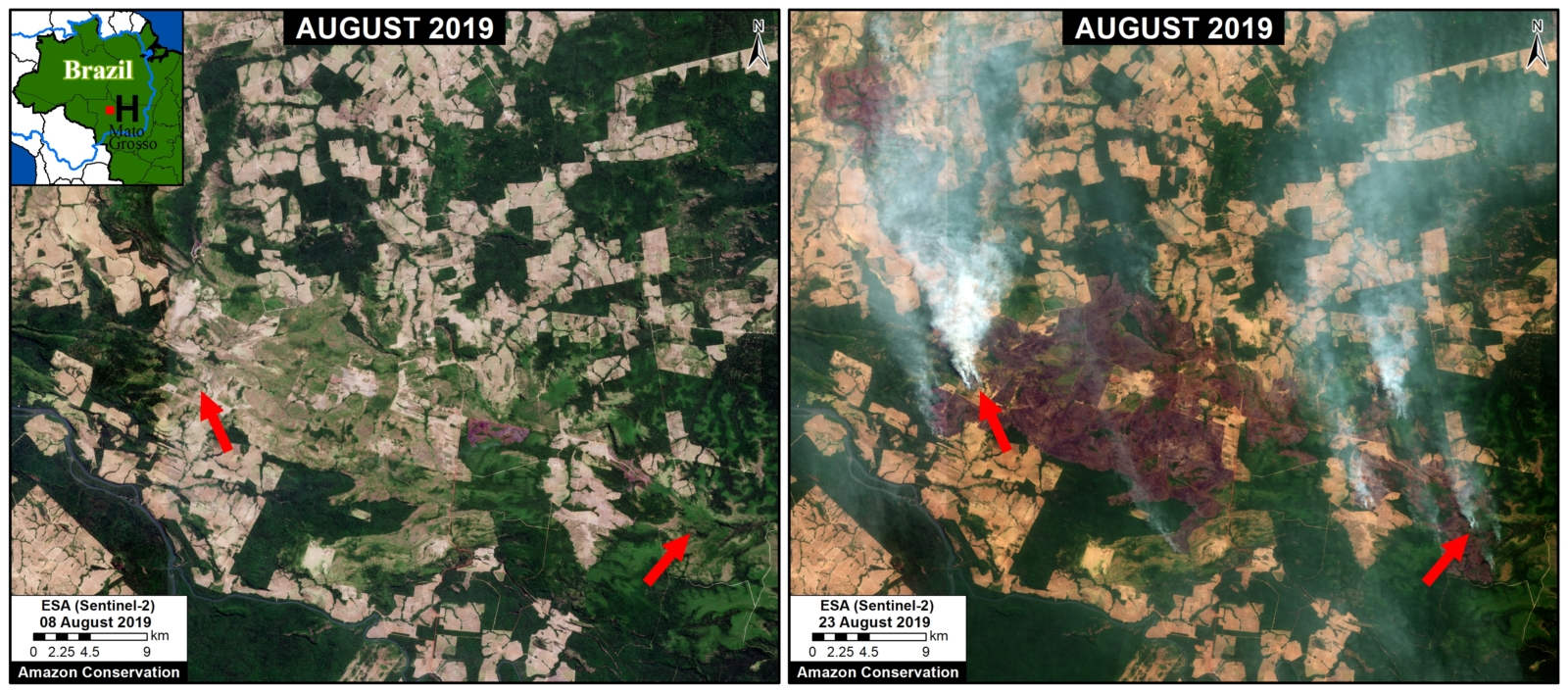 Zoom H. Fires at the agriculture-forest boundary in Mato Grosso. Data- ESA
