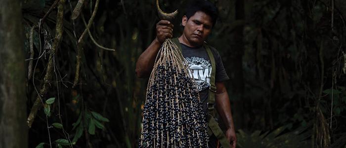 man holding acai berries