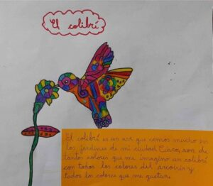 'El Colibri' bird drawing done during Amazon Conservation 'if you were a bird what would you be' contest