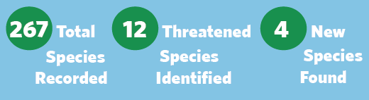 267 Total species recorded, 12 threatened species identified, 4 new species found graphic
