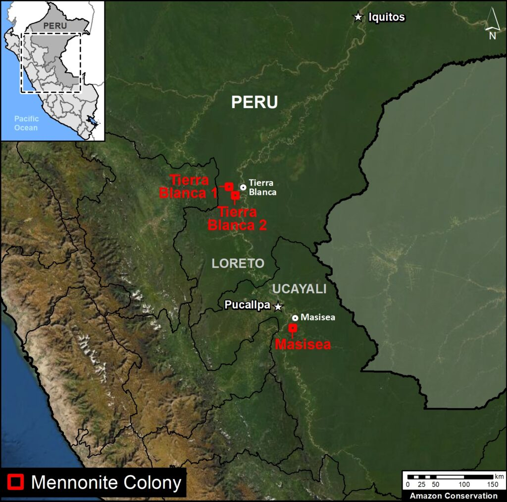 Base Map. Location of the three new Mennonite Colonies in the Peruvian Amazon. Data: MAAP.