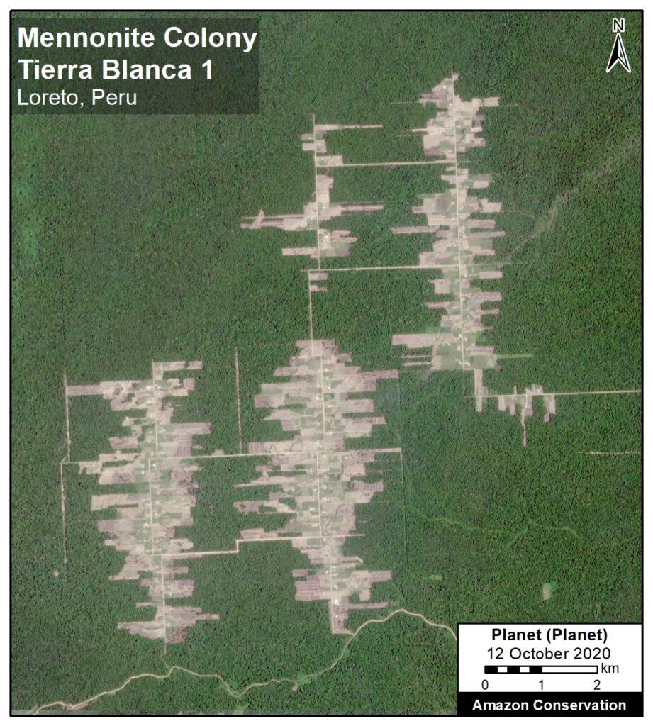 Recent deforestation associated with the Mennonite colony Tierra Blanca 1, in Loreto, Peru. Data: Planet