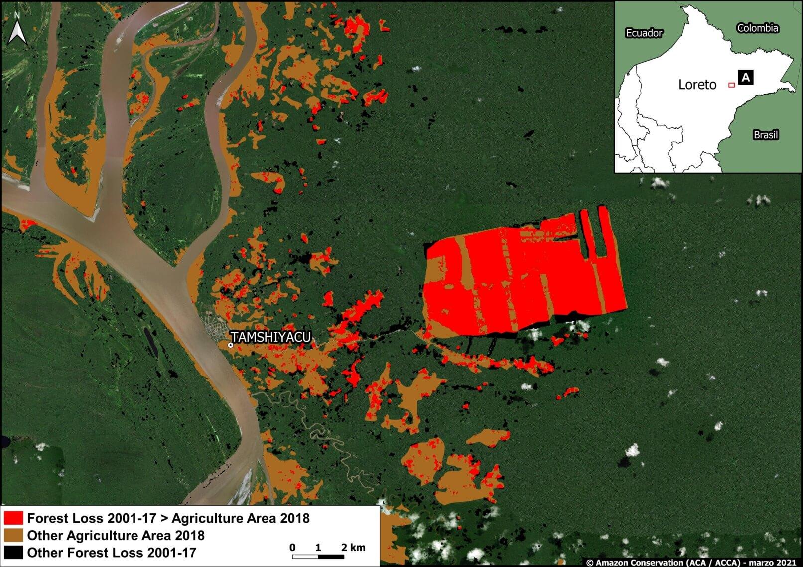 Zoom A. United Cacao (Loreto region). Data: MAAP, MIDAGRI, MINAM/Geobosques.