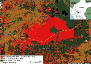 Zoom B. Oil palm deforestation around Shanusi (Loreto region). Data: MAAP, MIDAGRI, MINAM/Geobosques.