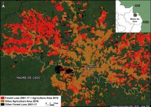Zoom D. Agriculture related deforestation around Iberia (Madre de Dios region). Data: MAAP, MIDAGRI, MINAM/Geobosques.