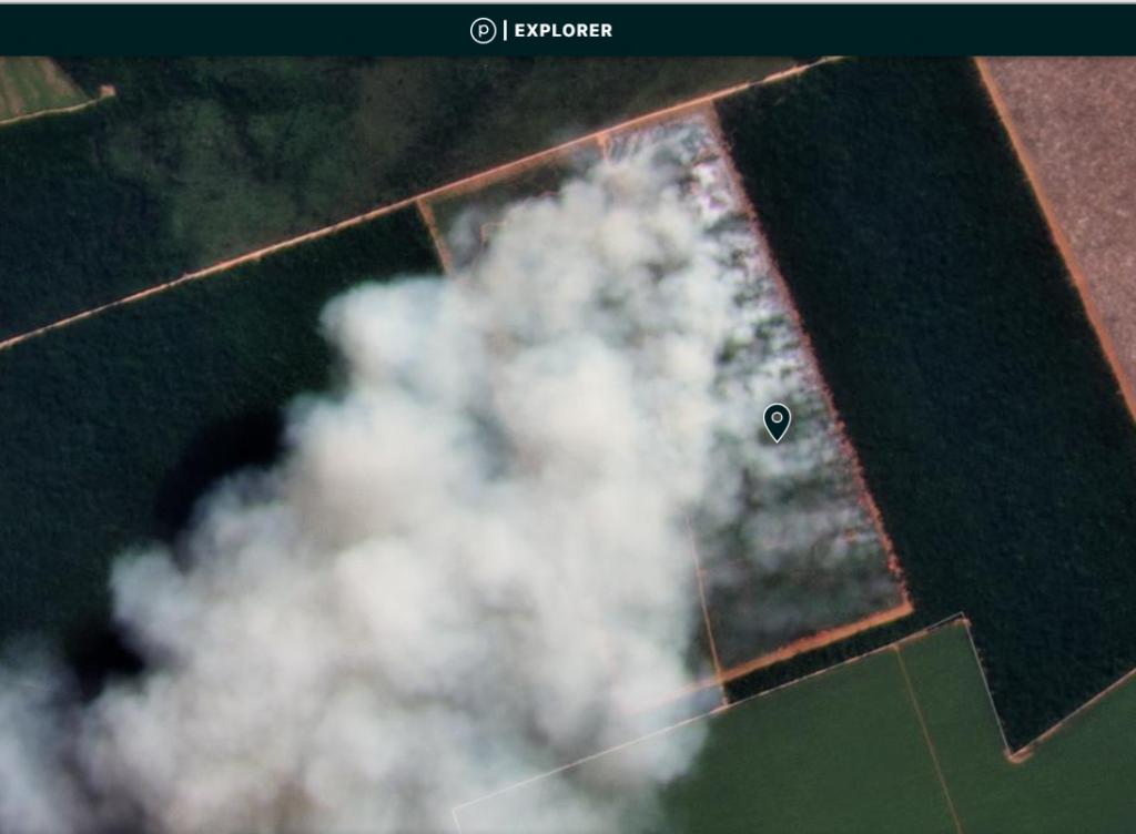 2021 Brazilian Amazon Fire #2. Mato Grosso. Data: MAAP, Planet.