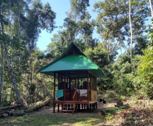 Laboratorio de Conservación de Vida Silvestre Los Amigos